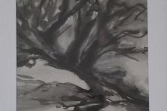 GBK BB (bonsai boom)